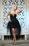 Portrait of pretty woman standing in black elegant dress outdoors Stock Photography