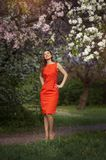 Portrait of pretty woman standing near the flowered tree Stock Photo