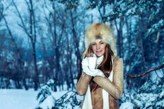 Pretty woman in the winter park stock photography