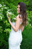 Portrait of pretty woman in wedding dress in blooming summer gar Royalty Free Stock Photos