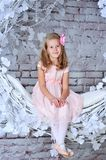 Portrait of a pretty 8 year old girl. In pink dress Royalty Free Stock Images