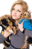 Portrait of pretty young blonde with two dogs. Isolated Stock Photography