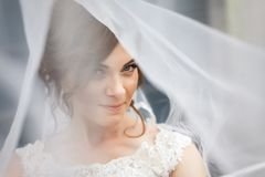 Portrait of pretty bride with white veil over her face. Portrait of pretty, young bride with white veil over her face. Concept of young gorgeous bride Stock Photo