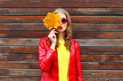 Portrait pretty young woman with autumn yellow maple leafs wearing a red leather jacket over wooden Stock Images