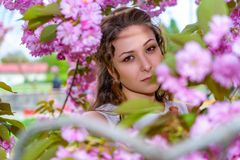 Portrait of pretty young woman with curly hair in blossom of pink flowers of sakura