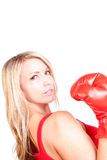 Portrait of pretty young woman doing boxing exercise Stock Images