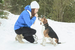 Portrait of a pretty young woman with her pet dog. A Portrait of a pretty young woman with her pet dog in winter season Royalty Free Stock Image