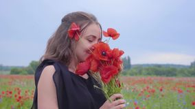 Portrait of pretty young woman holding and sniffing bouquet of flowers in hands looking in the camera standing in a. Pretty girl in poppy field holding bouquet stock video footage