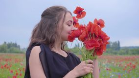 Portrait pretty young woman holding and sniffing bouquet of flowers in hands looking in the camera standing in a poppy. Pretty girl in poppy field holding stock video footage