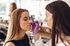 Portrait of professional cosmetologist in purple gloves making permanent eyebrows stock images