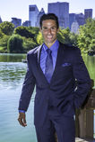 Portrait of Professional Executive Royalty Free Stock Photos