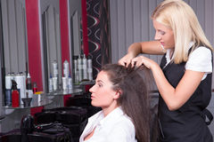 Portrait of professional hairdresser working in beauty salon Royalty Free Stock Images