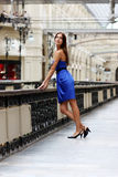 Portrait of a professional model in blue dress. Fashion portrait of a professional model Royalty Free Stock Images