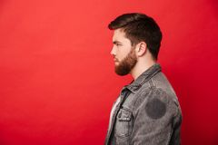 Portrait in profile of concentrated bearded man in jeans jacket. Looking straight on copyspace with brooding serious gaze isolated over red background Royalty Free Stock Photography