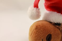 Portrait profile of cute christmas reindeer plush in studio Royalty Free Stock Photography