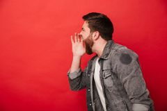Portrait in profile of irritated bearded man in jeans jacket loo Royalty Free Stock Photo
