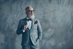 Portrait of proud respected confident handsome masculine virile. Vintage grey-haired sharp dressed in bespoke checkered grey suit with vinous handkerchief Stock Image