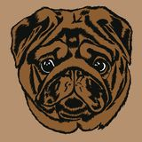 Portrait of pug royalty free illustration
