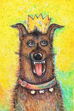 Portrait of the Queen`s birthday dog on a yellow background Stock Photo