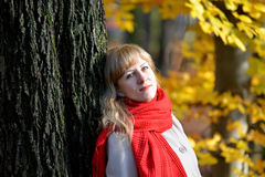 Portrait of the quiet young woman with a red scarf against the background of an autumn tree Stock Images