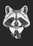 Portrait of Raccoon in suit. Hand drawn illustration Royalty Free Stock Photo