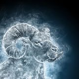 Portrait of a ram Royalty Free Stock Image
