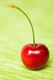 Portrait of a red cherry Stock Photos