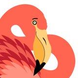 Portrait of red flamingo Stock Photo