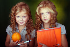Portrait of red hair sisters. Portrait of two red hair sisters holding orange stuff Stock Image