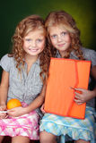 Portrait of red hair sisters Royalty Free Stock Image