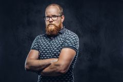 Portrait of a redhead bearded male dressed in a t-shirt posing with crossed arms. Isolated on dark textured background. stock images