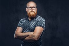 Portrait of a redhead bearded male dressed in a t-shirt posing with crossed arms. Isolated on dark textured background. royalty free stock image