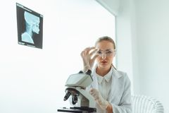 Portrait of research scientist is using microscope in laboratory royalty free stock photos