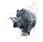 Portrait Of A Rhinoceros watercolor Royalty Free Stock Image