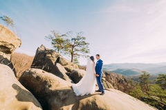 Portrait of romantic newlywed couple posing on rocky cliff with mountain landscape as backround Royalty Free Stock Photography