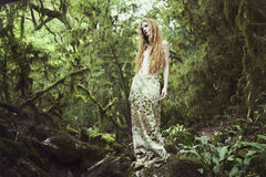 Portrait of romantic woman in fairy forest. Beauty summertime Royalty Free Stock Image