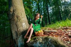 Portrait of romantic woman at fairy forest Stock Photos