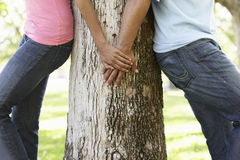 Portrait Of Romantic Young African American Couple In Park Stock Photos