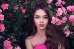 Portrait romantique de beauté de femme dans les roses roses Photo stock