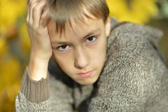Portrait of a sad little boy. Outdoors in autumn royalty free stock images