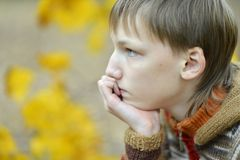 Portrait of a sad little boy outdoors. In autumn Stock Images