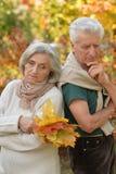 Sad senior couple in  park Stock Photo