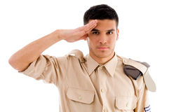 Portrait of saluting soldier Royalty Free Stock Image