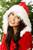 Portrait of santa woman with christmas tree on a background, looking at the camera.  Royalty Free Stock Photography