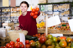 Portrait of satisfied young female customer selecting tomatoes i. N grocery store royalty free stock image