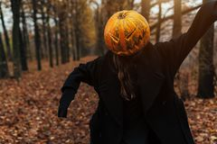 Portrait of a scary Jack-lantern with a pumpkin on his head. Halloween legend. Dressed in black coat. Autumn forest royalty free stock images