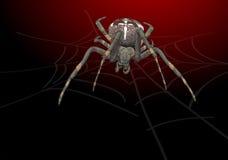 Portrait scary spider. Illustration Royalty Free Stock Photo