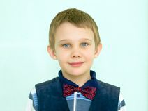 Portrait of the schoolboy Royalty Free Stock Image