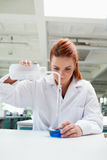 Portrait of a science student doing an experiment Stock Photo