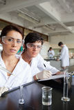 Portrait of science students working. In a laboratory Royalty Free Stock Images